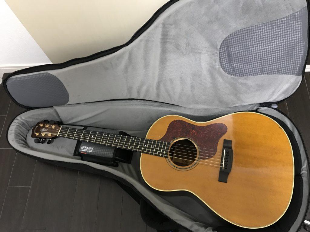 mono ギターケース ドレッドノート