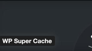 WP Super CacheをJINに導入してみた
